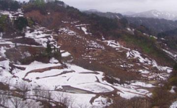 平成23年 長野県北部地震で生じた大規模地すべり